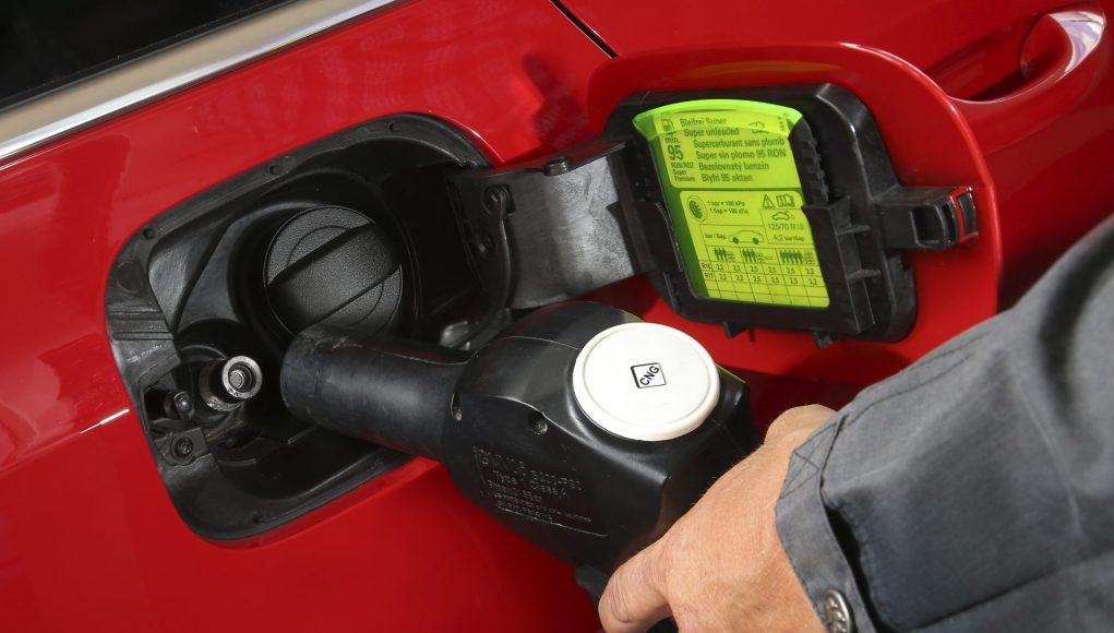 CNG, zemní plyn, octavia